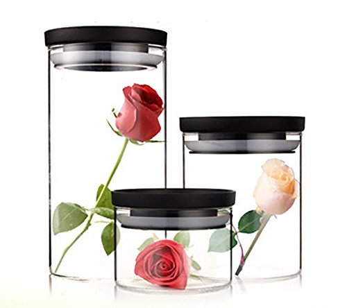 Xiazhi Glass Canister Set Glass Jars with airtight LidFood Storage ContainersSet of 3