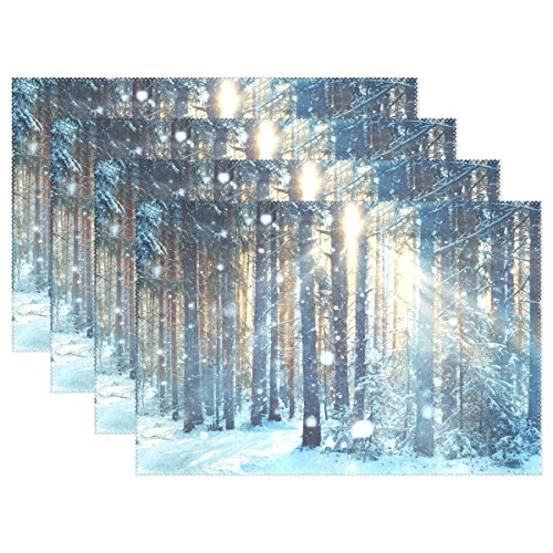 La Random Frosty Winter Landscape Placemats Table Mat Set of 6 Table Mats for Kitchen Dining Room Polyester 12 x 18 Inches