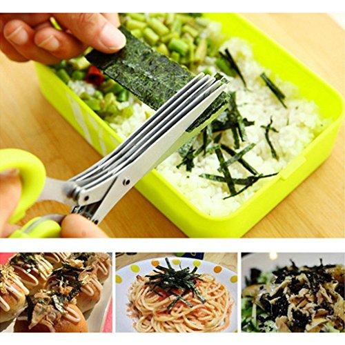 Pannow Stainless Steel Kitchen Herb Scissors with 5 Blades Multipurpose Kitchen Shear