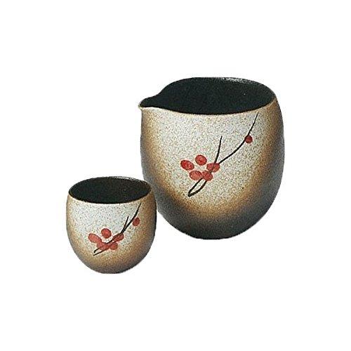 Japanese Ceramic Shigaraki ware Set of Sake tokkuri bottle server and guinomi cup Shuka 3-1233