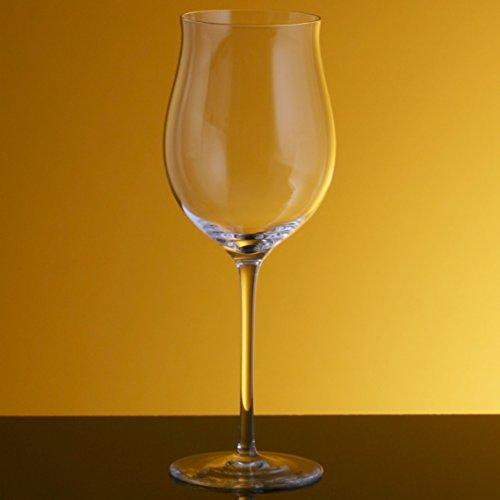 Bottega del Vino Rosso Giovane Crystal Red Wine Glass Set of 2