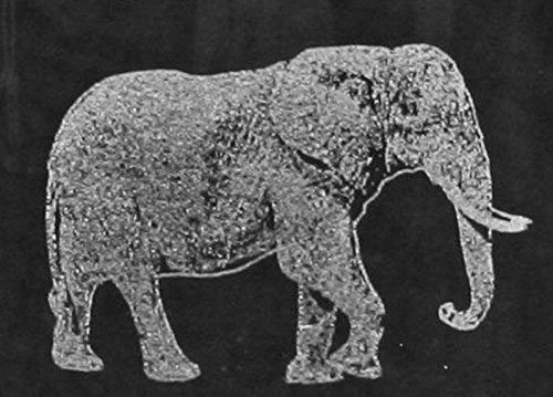 Elephant Laser Etched White Wine Juice Glass Set 2 SWW