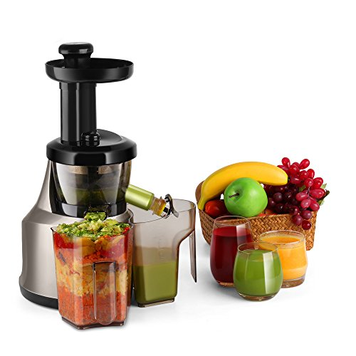 Flexzion Cold Press Juicer Machine - Masticating Juicer Slow Juice Extractor Maker Electric Juicing Vertical Stand for Fruit Vegetable Greens Wheat Grass More with Big Cup Juicing Bowl
