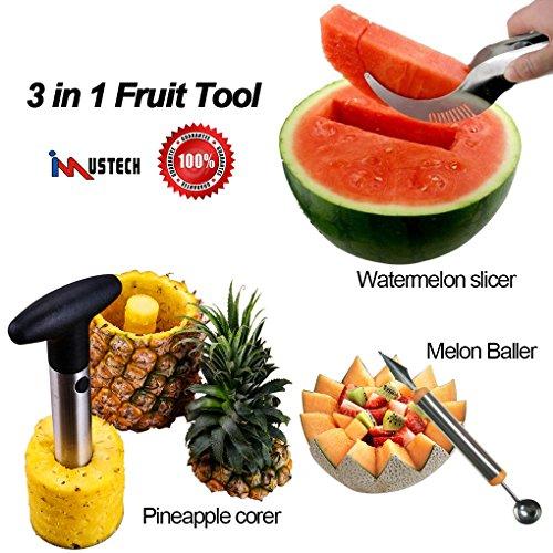 iMustech 5 in 1 Fruit Slicer Stainless Steel Fruit Knives Set Melon BallerScoop  Pineapple Corer  Watermelon Slicer with 2 BonusStrawberry Huller Banana Cutter Perfect Kitchen Tools