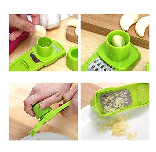 DALAI Manual Ginger And Garlic Grater for Kitchen Tool