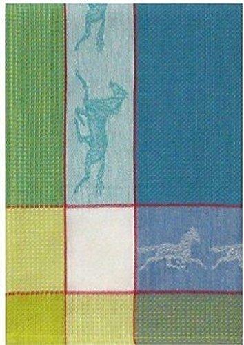 100 Cotton Blue Green 20x28 Dish Towel Set of 3 - Horse Cadet