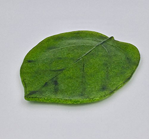 Green 75 Kiwi Leaf Fused Glass Plate