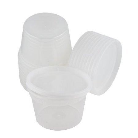 Plastic 16 oz Deli Container with Lids - 10 Count