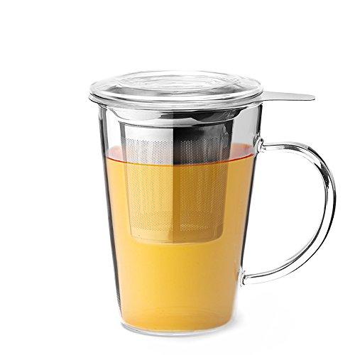 Teabox Clear Tea Mug Borosilicate Glass Stainless Steel Infuser 15 fl oz