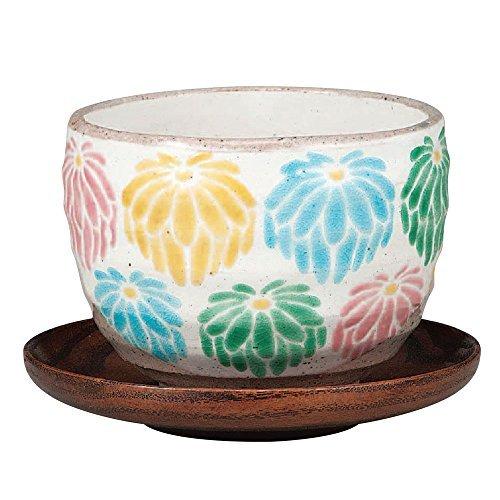 Kutani Yakiware Japanese Yunomi Tea Cup Chrysanthemum