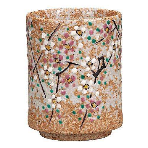 Kutani Yakiware Japanese Yunomi Tea Cup Plum