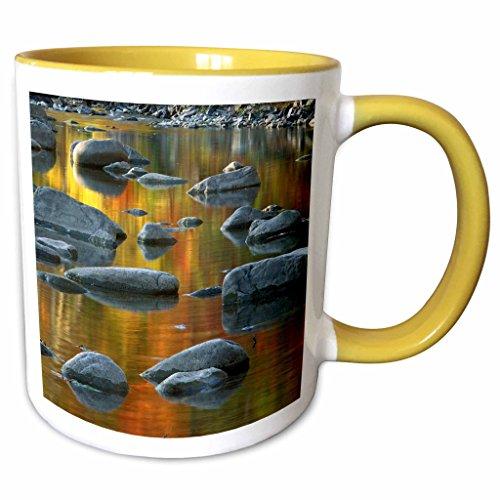 3dRose Danita Delimont - Charles Gurche - Rivers - USA West Virginia Monongahela NF South Fork Potomac River  - 11oz Two-Tone Yellow Mug mug_189849_8