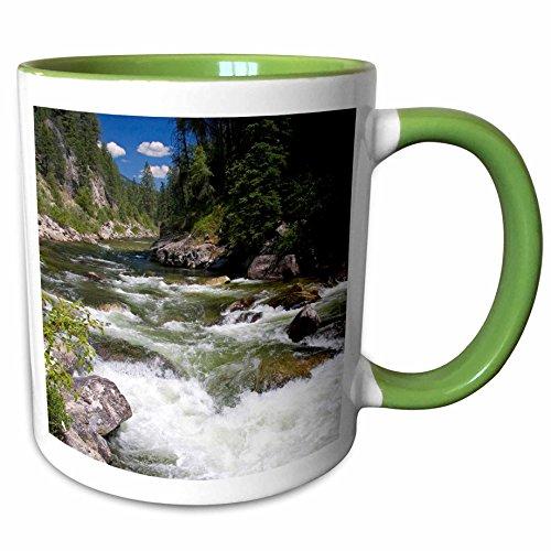 3dRose Danita Delimont - Rivers - South Fork of Salmon River Yellow Pine Idaho - US13 DFR0297 - David R Frazier - 11oz Two-Tone Green Mug mug_89982_7