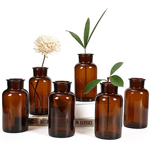 Bud Vases Apothecary Jars Decorative Amber Tall Bottles Elegant Antique Decoration Small Glass Flower Vases Vintage Medicine Bottles for Home Decor Centerpieces Events Set of 6