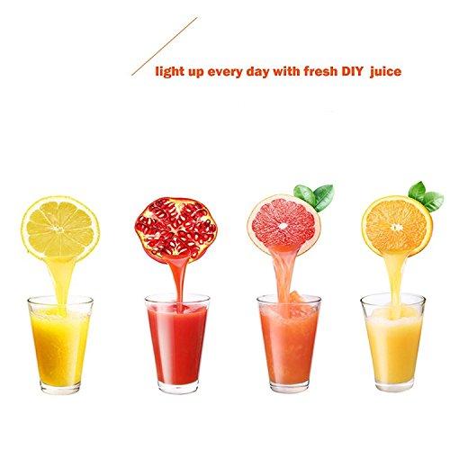 FCH Commercial Grade Citrus Juicer Hand Press Manual Fruit Juicer Juice Squeezer Citrus Orange Lemon Pomegranate Black